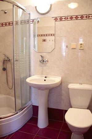 Penzion Na Ruzku : Bathroom