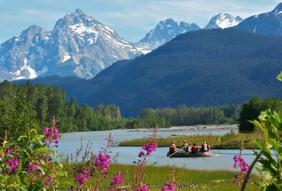 Chilkat Guides - Chilkat Bald Eagle Preserve Float