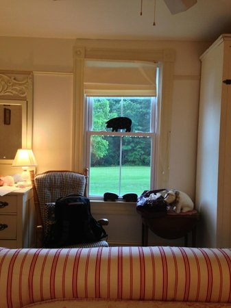 White Pig Bed and Breakfast: View from the Norman room