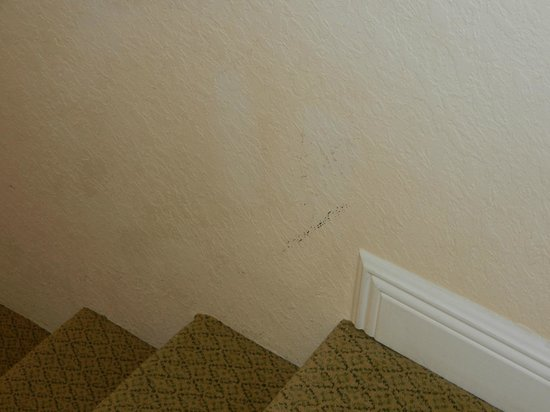 Reunion Resort, A Salamander Golf & Spa Resort: paint needs work in all rooms!
