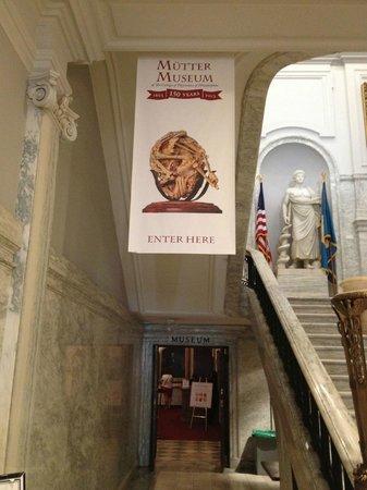 Mutter Museum: Entrance