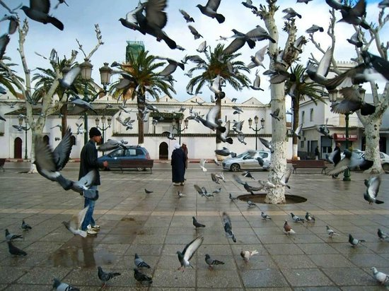 Lieux nommé la place au centre ville de Tlemcen