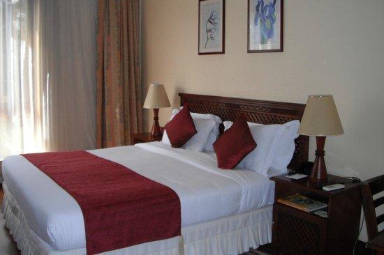 Kibo Palace Hotel: Room