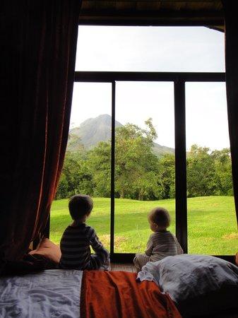 هوتل كامبو فيردي: Notice the forest on edge of property, and the volcano on the background!