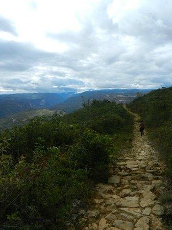 Amazon Expedition Turismo Sostenible  -Day Tours: preincan trail