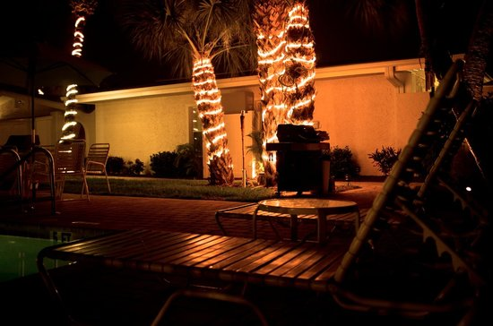 Sea Spray Resort on Siesta Key: Night shot of the palms