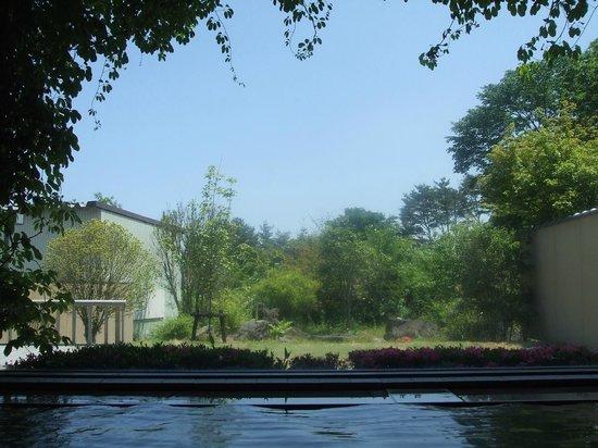 Soranoniwa Resort: 内湯から