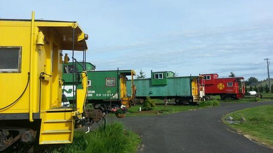 Red Caboose Getaway : A few of the cabooses.