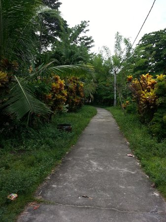 Bobocha Cottages Siladen: Walk way to the local village