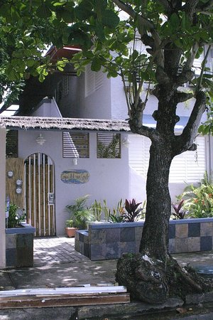 Coqui del Mar Guest House: The entrance to Coquí del Mar.