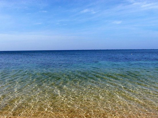 Shady Shack: The clear water of the beach