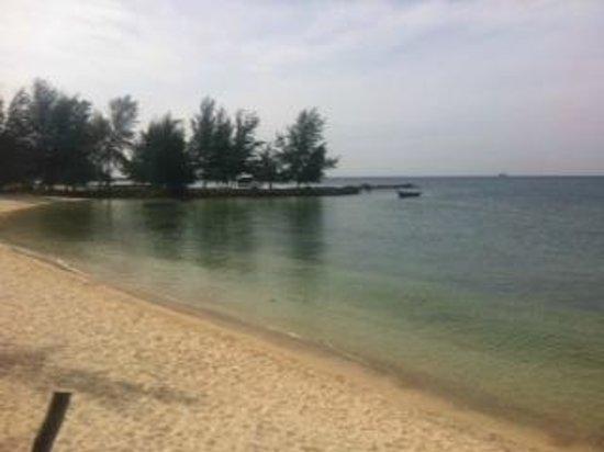 Shady Shack: The beach