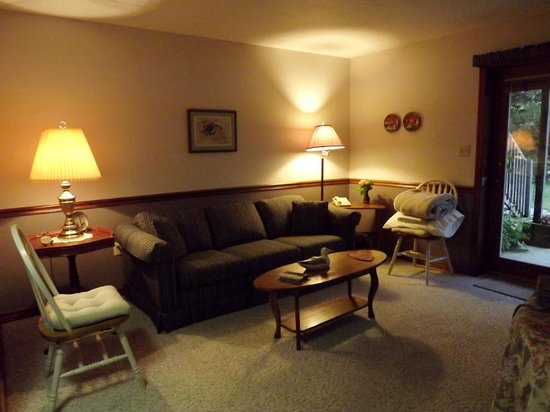 Red Bud Cove Bed and Breakfast Suites: The spacious living room and couch where I slept.