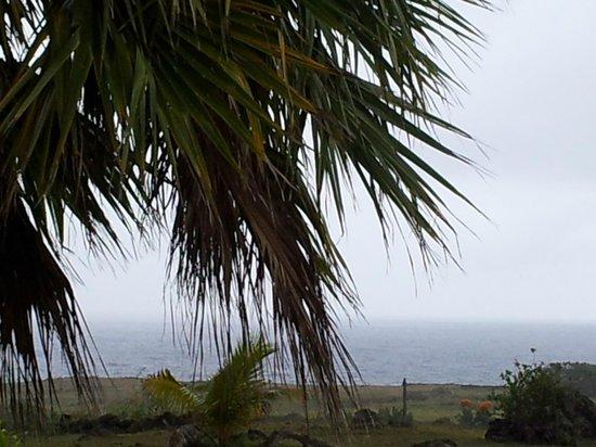 Cabanas Manatea : Vista desde las cabañas, en un día de tormenta.