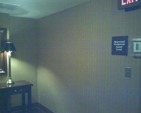 Sheraton Duluth Hotel: 5th floor elevator lobby