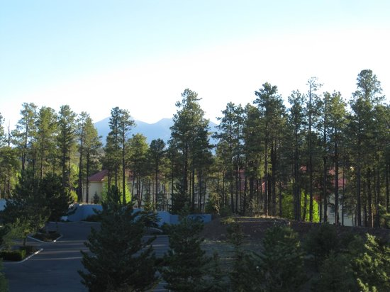 Comfort Inn Flagstaff : View from my room