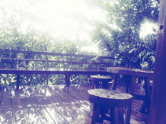 Flameback Lodges: rain rain go away