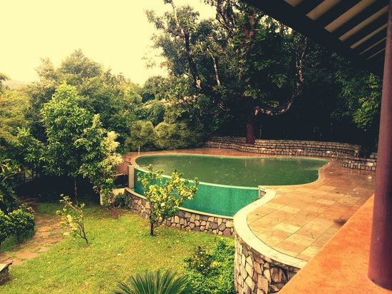 Flameback Lodges: pool
