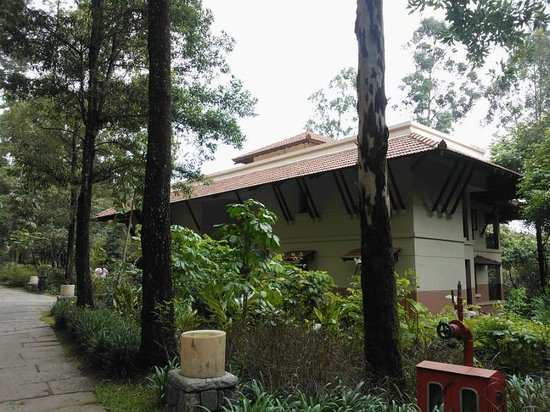 Club Mahindra Madikeri, Coorg: View within the resort