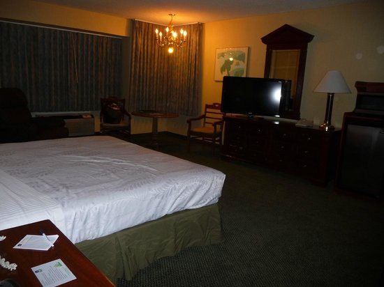 Airport Plaza Hotel : Spacious room