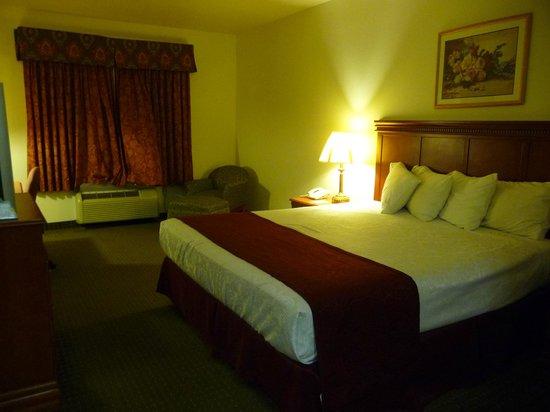 Best Western Plus Lake Elsinore Inn & Suites: Nice room