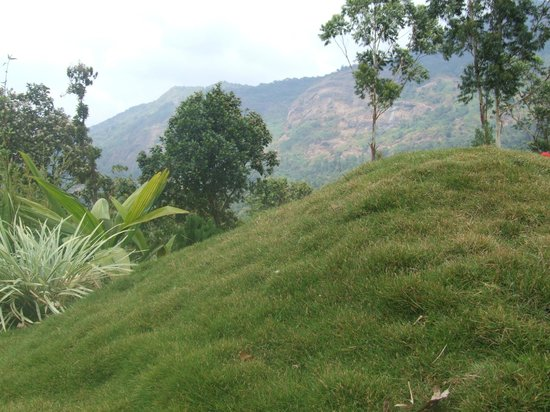 Wild Elephant Eco Friendly Resort: View from the resort