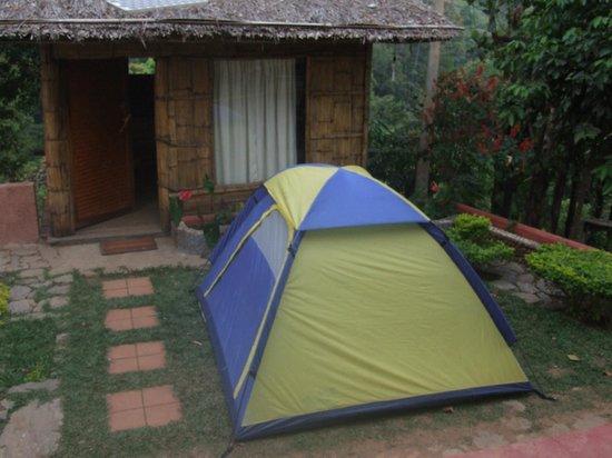 Wild Elephant Eco Friendly Resort: Tent outside cottage