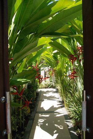 Villa Drupadi: Villa Entrance