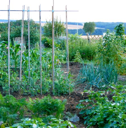 Auberge de la Tuilerie : The vegetable garden