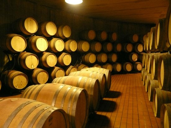 Monte Vibiano Vecchio, Italie : The wine cellar
