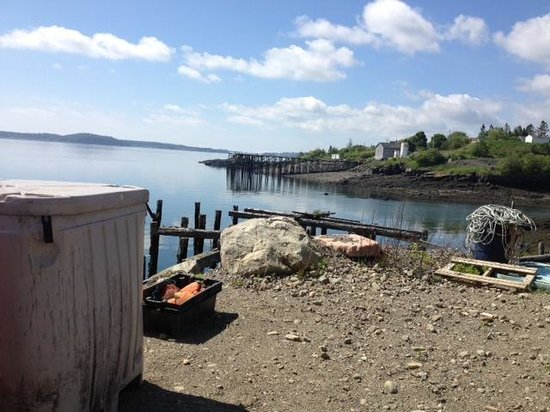 Quoddy Bay Lobster : Looking out on the bay