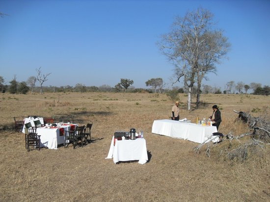 Sabi Sabi Little Bush Camp: Breakfast