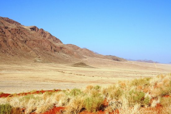 Wolwedans Dunes Lodge: paesaggio