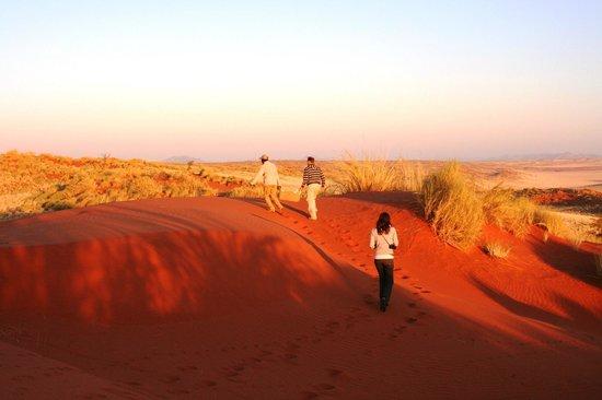 Wolwedans Dunes Lodge: si parte per il tramonto