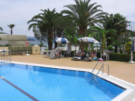Athos Hotel: Pool & Tree bar