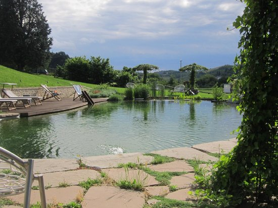 Corte D'Aibo: Beautiful natural bio-pond with shower and canopy