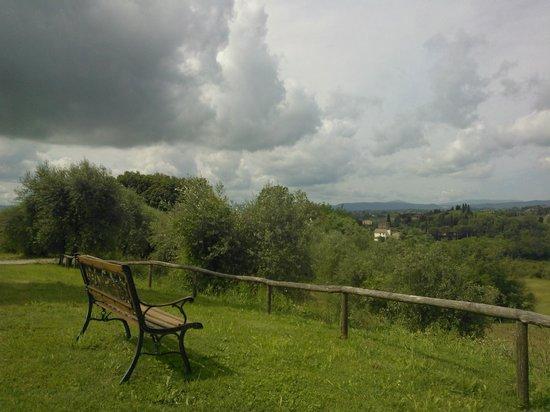 Villa Cambi B&B: Garden