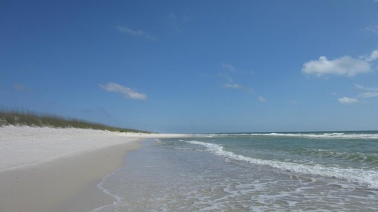 St. Joseph Peninsula State Park: Beautiful beach that we walk to from the campground