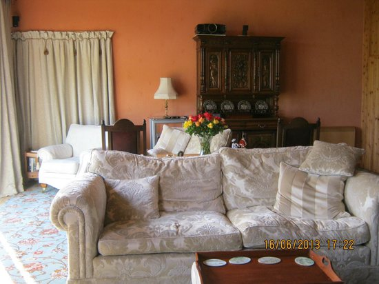 Willowbank House B&B: Beautiful and comfortable seating in the guest lounge