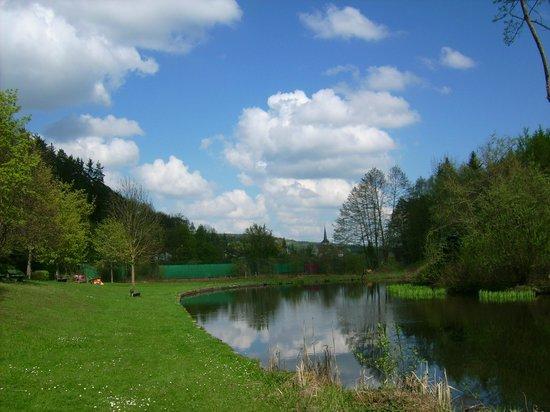 Gastehaus Hochrhonblick: Libellenteich im Ort