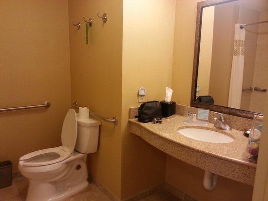 Hampton Inn & Suites Columbia (at the University of Missouri) : bathroom