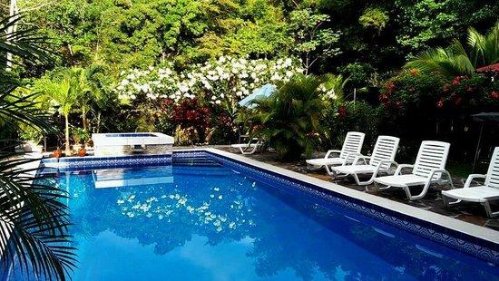 Coconut Lodge: Saltwater pool