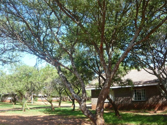 Rustenburg, Sudáfrica: Beautiful Ranch