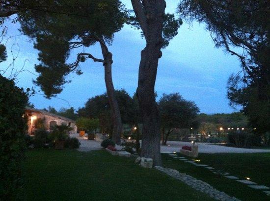 Le Mas De La Rose: Evening - looking toward Potager