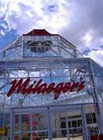 Java Cafe - Milaeger's Inc.