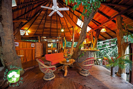 Cool Tree Houses Inside Intended Tree House Lodge Tree House Inside Picture Of Lodge Puerto Viejo De