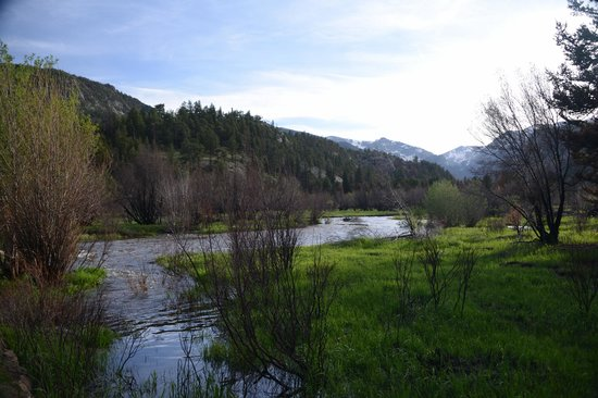 Moraine Park Campground: Nearby creek view