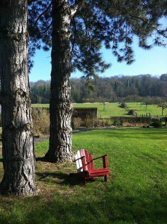 Chateau les Parcs Fontaines : parc et foret