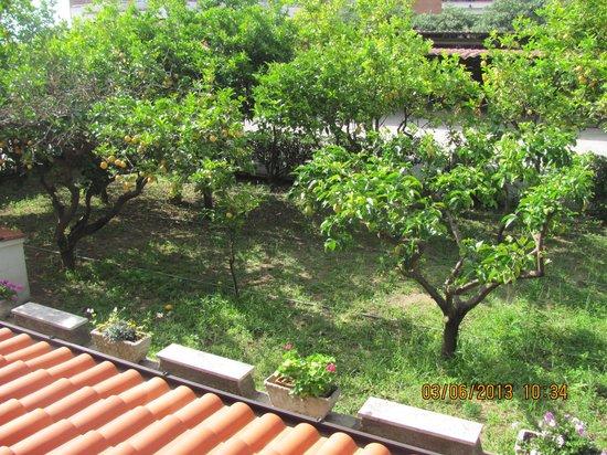 Hotel Casa Yvorio: вид из окна