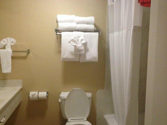 Anaheim Camelot Inn & Suites : Bathroom